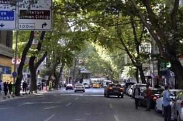 Necatibey Caddesi Yol Boyu Otopark Uygulaması